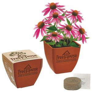 Bamboo Blossom Kit w/Seeds & Pot